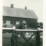 Elin mit Kuh, im Hintergrund die Scheune - noch mit Kaminen