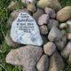 2012 - ...nur wenige Wochen später tötet ein Marder alle anderen Kaninchen im Winterstall