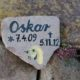 2012 - Oskar bricht sich das Bein in einem Loch das Lilly gegraben hatte und muß schließlich eingeschläfert werden