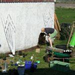 2008 - etwas Blühendes braucht es auch!